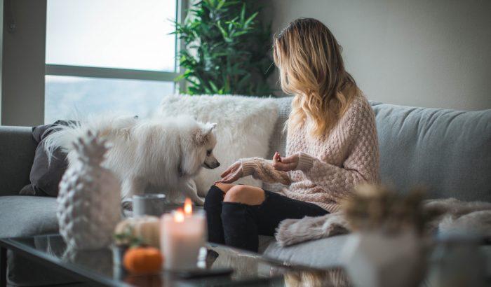 Kutyák, macskák, illatgyertyák: minden, amit az illatokról és háziállatokról tudni kell
