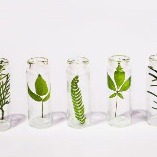 Innovatív natúrkozmetikumok, amiket neked is érdemes megismerned