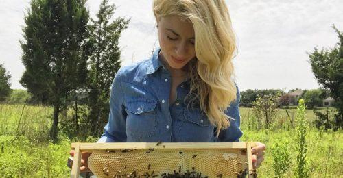 A méhekkel suttogó puszta kézzel menti a méheket
