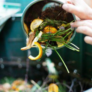 Az ételpazarlás luxus – így kerülheted el!