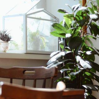Lakásból otthont: ezekkel lehet barátságosabb a lakás