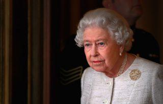 Meghalt II. Erzsébet egyik új kiskutyája