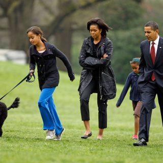 Meghalt Bo, az Obama család kutyája