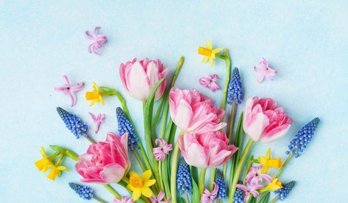 10 tipp, hogy tovább maradjon friss a vágott virág