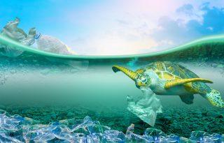 Az elviteles étel hulladékából van a legtöbb az óceánokban