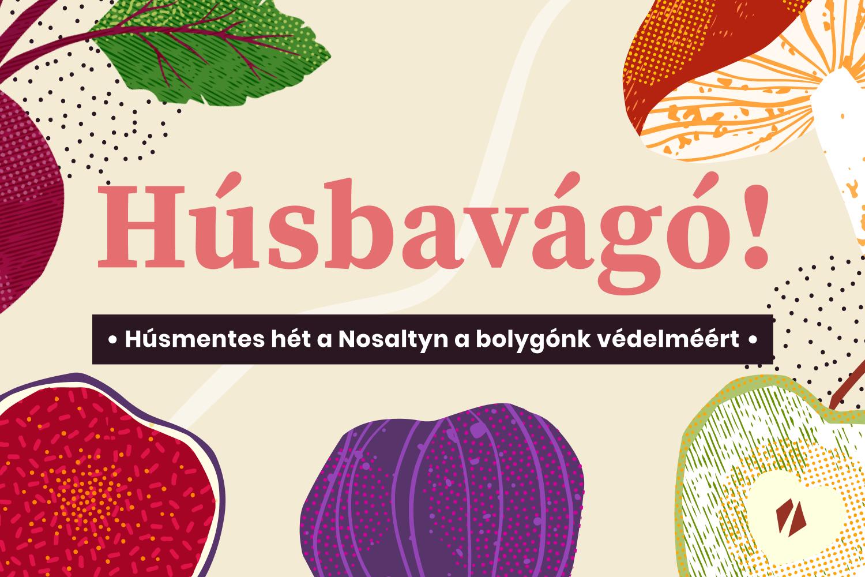 nosalty-husmentes-vilagnap-kampany
