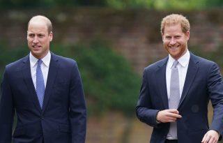 Vilmos herceget és Harryt ismét összehozta Diana