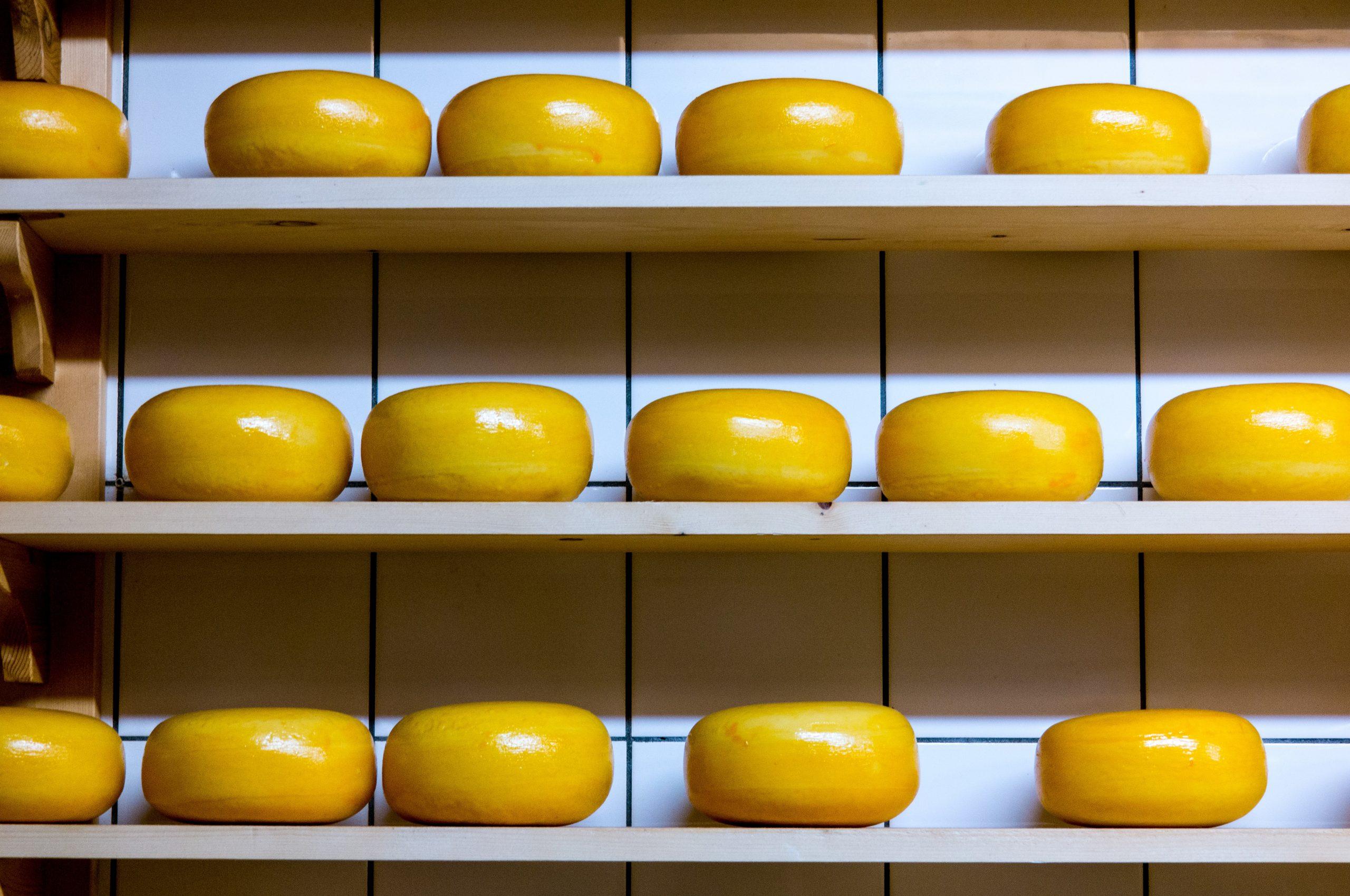 sajt-dieta-alacsony-zsirtartalom