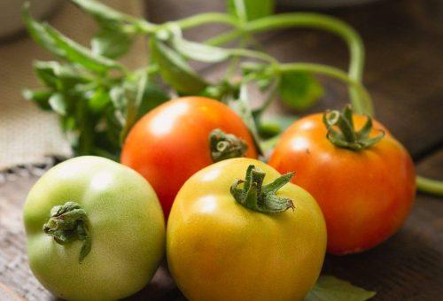 7 ok, amiért megéri paradicsomot enni