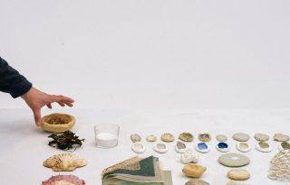 Eldobott kagylóhéjakból készültek meseszép kerámiák
