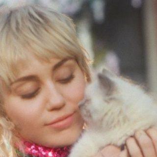 Az uszkár vagy a mulletes Miley Cyrus áll-e jobban az új Gucci parfümnek?