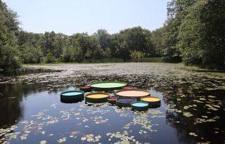 Hatalmas tavirózsákon pihenhetünk a víz közepén