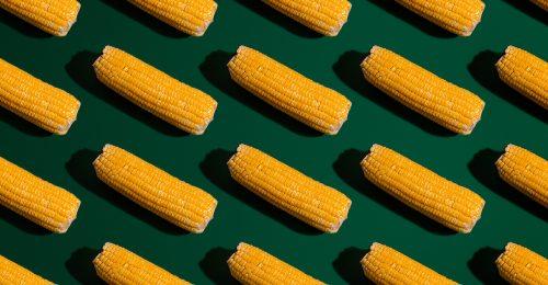 Jó nekünk a kukorica? Ez az igazság a feldolgozott formáiról!