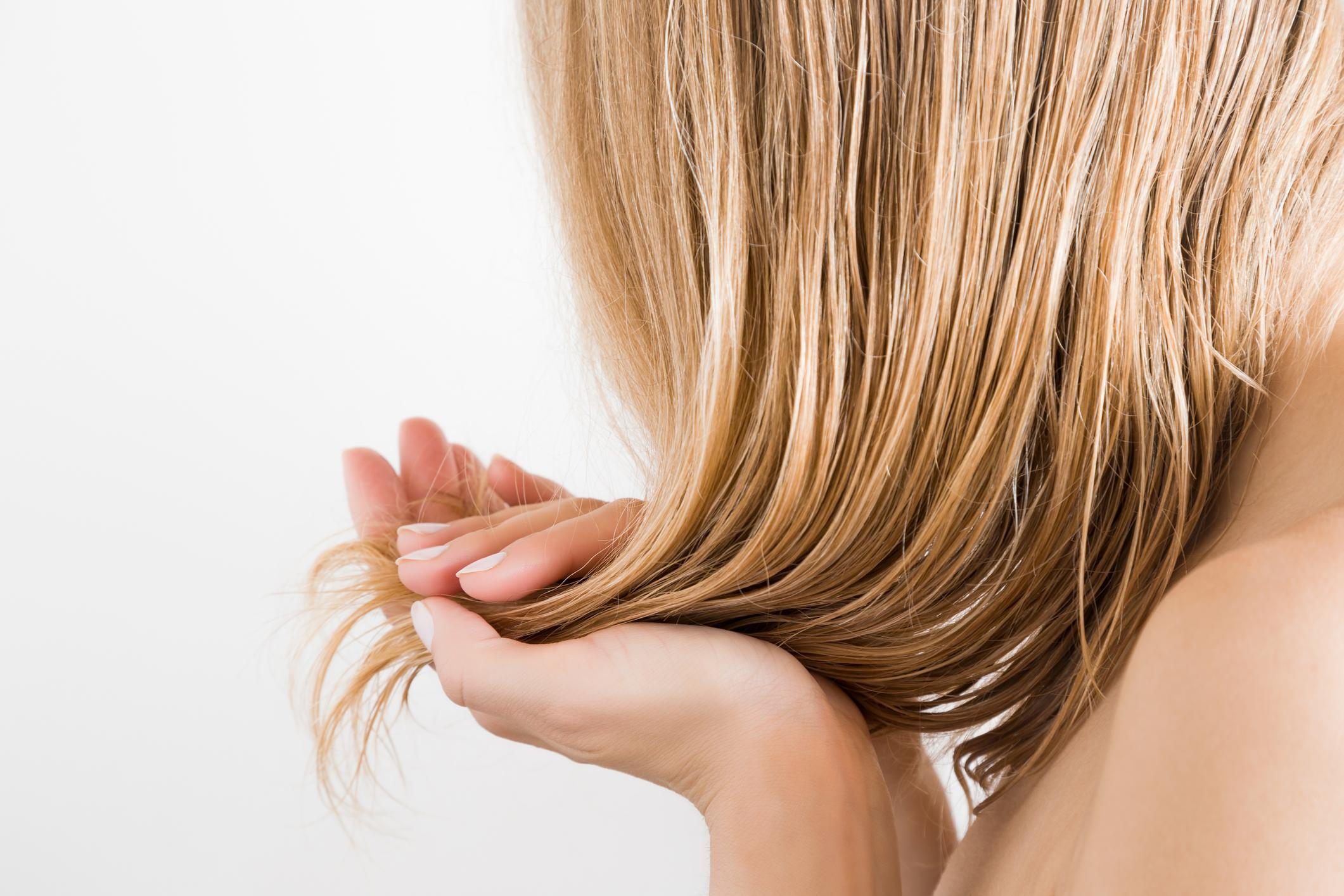hajhullas-elleni-sampon-noknek