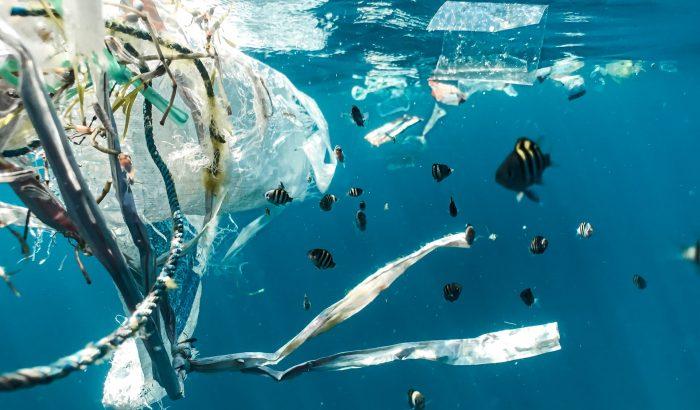 Sokkoló környezetvédelmi dokumentumfilmek inspirálnak minket a fenntarthatóságra